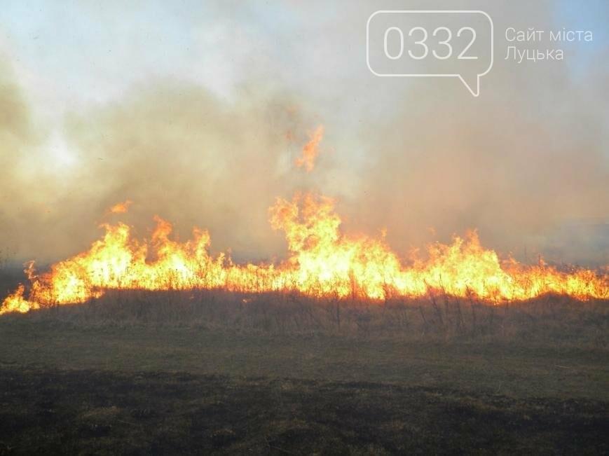 Впродовж доби в Україні виникло 123 пожежі на відкритих територіях, фото-1