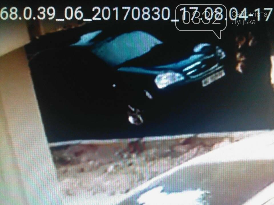 У Луцьку злодії обкрадають автівки, фото-3