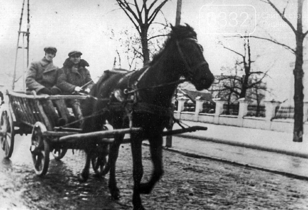 Доля гужового транспорту у Луцьку, фото-4