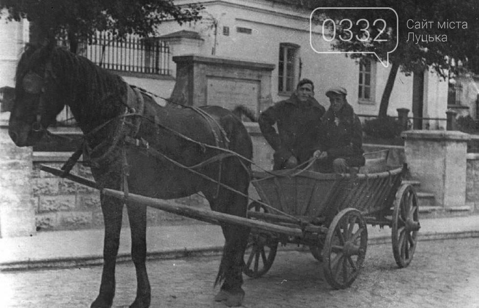 Доля гужового транспорту у Луцьку, фото-5