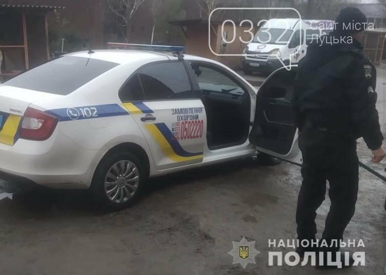 В Луцьку поліцейські охорони врятували цуценя, якого на трасі збила машина  (фото), фото-1