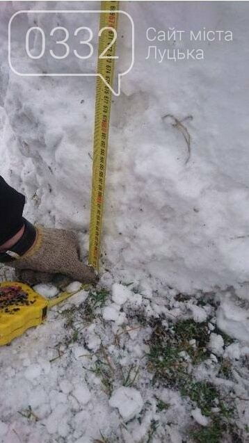 На Волині зліпили семиметрового сніговика, фото-3