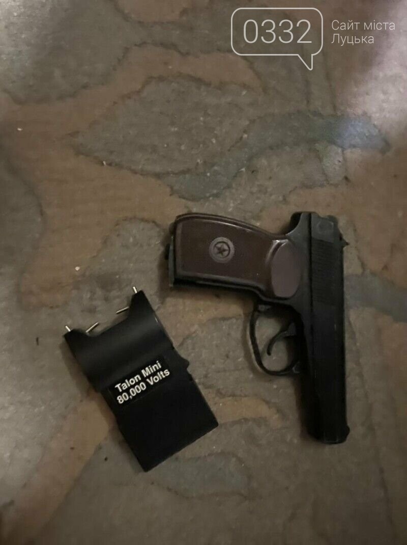Під час обшуків в оселях волинян вилучили бурштин та зброю, фото-2
