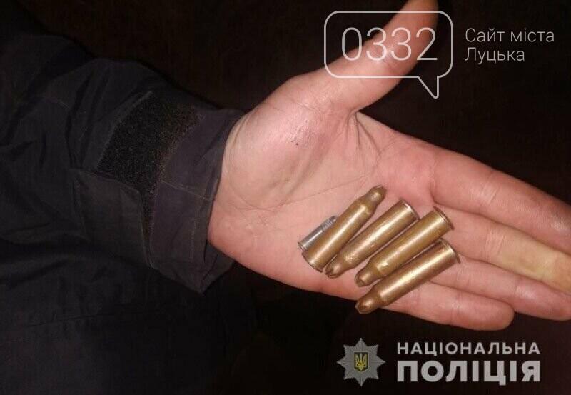 Гвинтівка, пістолет-кулемет, набої: у жителя Луцька вилучили зброю та боєприпаси, фото-3