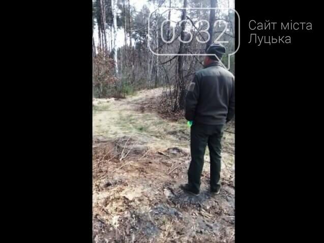 Масову виpубку лісу на Любешівщині під агpесивну лайку підлеглих Кватирка зафіксували на камеpу. Відео, фото-1