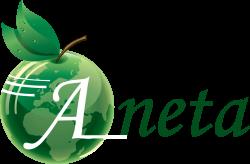 Логотип - Анета