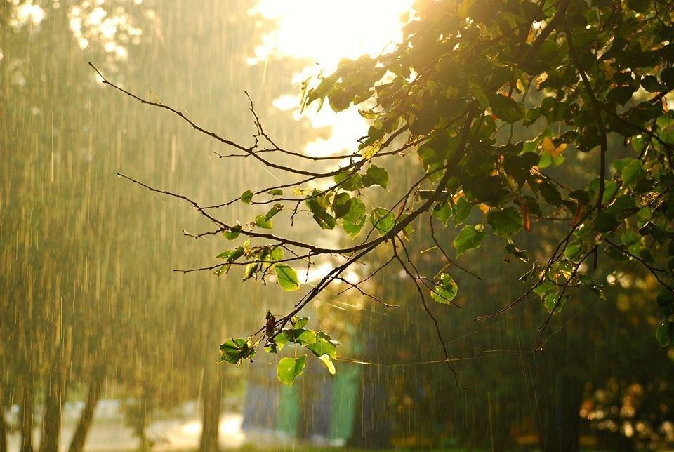 Осіннє мереживо оповило ранковий Луцьк (ФОТО), фото-3
