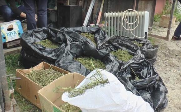 Бурштин, зброя та марихуана - несподівана знахідка поліції, фото-1