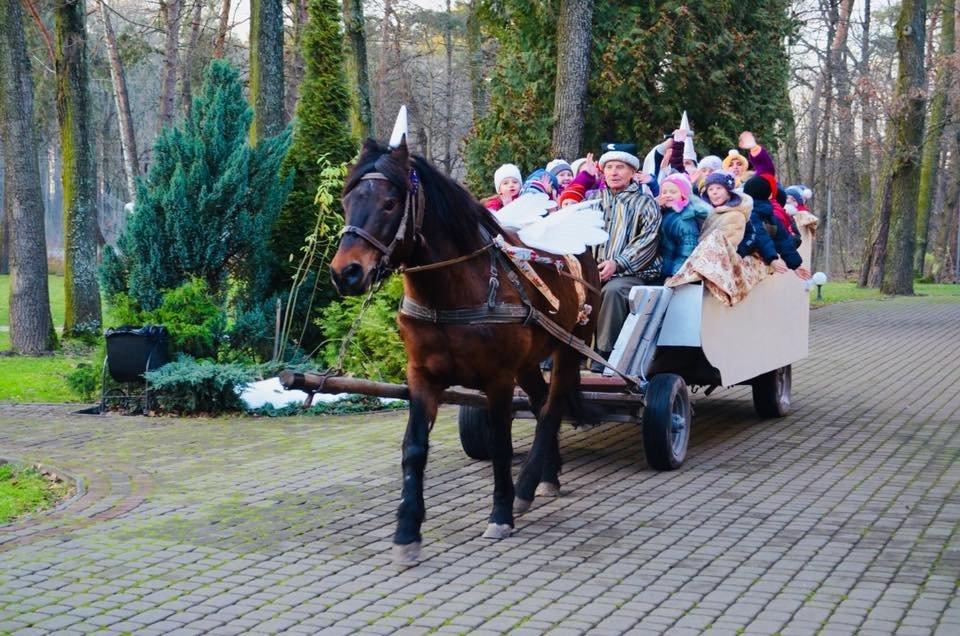 «Зелений гай» запрошує у Резиденцію Новорічної казки*, фото-3